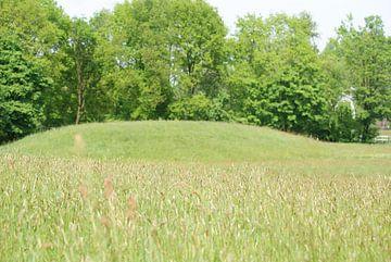 Een open veld van Peter Hartman