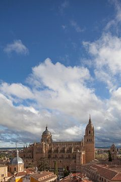 Alte und Neue Kathedrale , Salamanca, Kastilien-León, Spanien