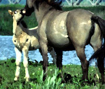 Konikpaarden sur Ronald Jansen