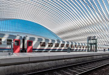 Station Liège-Guillemins van Midi010 Fotografie