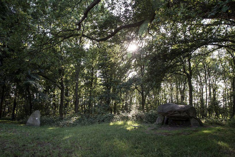 Hunebed G1 nabij Noordlaren, Groningen van Sander de Jong