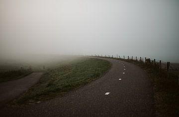 Mist van Marianne Bal