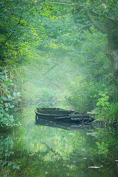 Verlaten boot II van Thijs Friederich