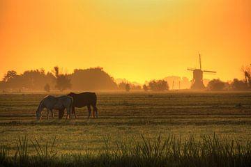 Zonsopkomst in Nederland von Stephan Neven