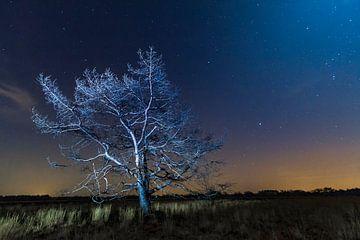 Nachtfotografie op de Groote Heide, Nederland van Easycopters