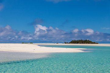 Tropisch eiland van Lizette Schuurman