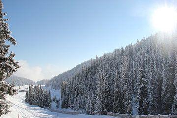 Winters dal in Zwitserland van