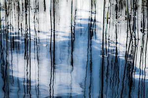 I still got the blues for you van Marieke van der Doef