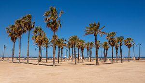 Strand Valencia van Arno Litjens