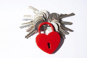 Welches ist der passende Schlüssel zu Deinem Herzen? von Norbert Sülzner