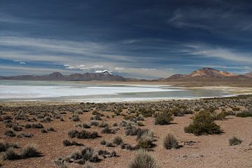 Zoutvlakte op de Altiplano in Bolivia met de Andes op de achtergrond van A. Hendriks
