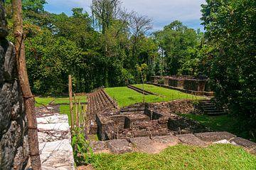 Guatemala: Archeologisch park en ruïnes van Quirigua von Maarten Verhees
