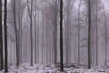 WinterHolz von Nicole Harren