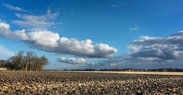 Akker in Noord-Groningen van Bo Scheeringa Photography