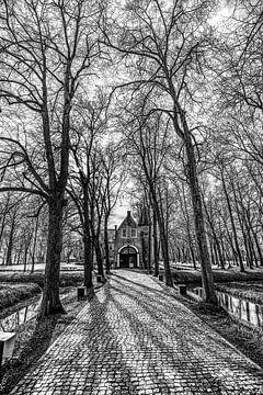 Oprijlaan Epemastate met bladloze bomen in het voorjaar van Harrie Muis