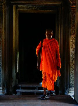 Monk von Dennis Debie