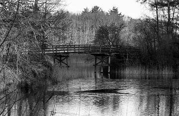 zwart wit foto van natuurgebied bij hilversum van Compuinfoto .