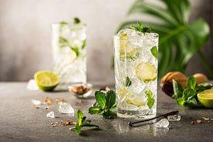 Mojito Cocktail met limoen en munt in longdrinkglas