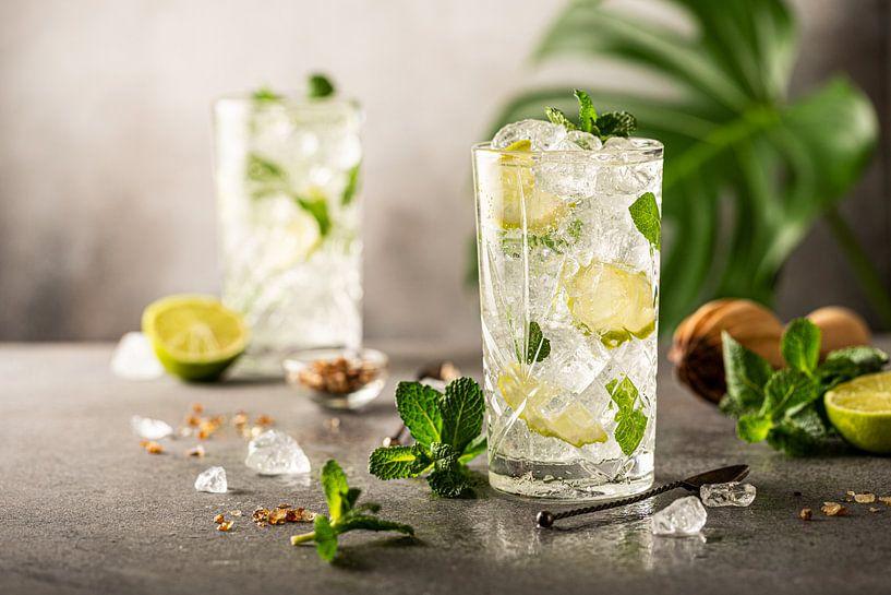 Mojito Cocktail met limoen en munt in longdrinkglas van Iryna Melnyk