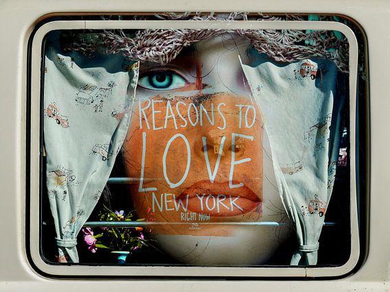Inside the car window van Gabi Hampe