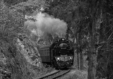 HSB 99-6001 Selketalbahn S/W von Marcel Timmer