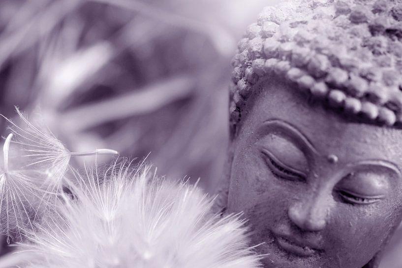 Bouddha van Martine Affre Eisenlohr
