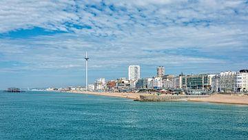 Brighton von Kok and Kok