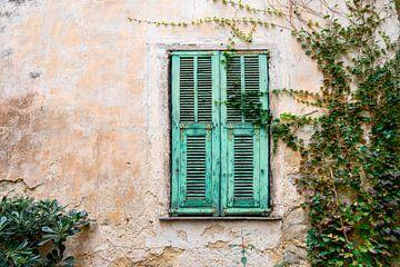 Alte Türen in Italien von Ellis Peeters