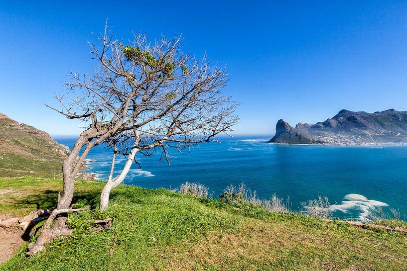 Houtbaai  Kaapse schiereiland Zuid-Afrika van Cor de Bruijn