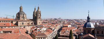 Vieille ville, Panorama, Salamanque, Espagne, Europe sur Torsten Krüger