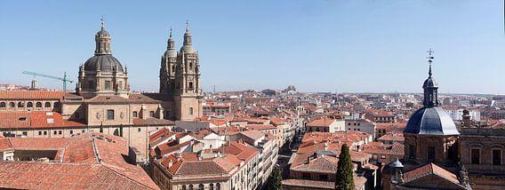 Altstadt, Panorama,  Salamanca, Spanien, Europa