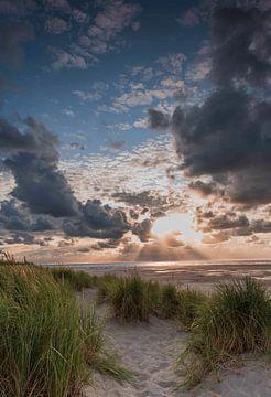 Texel am Meer von Marcel Hof