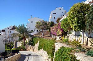 Buitenwijk van Altea met witte villa's met weelderige begroeiing tegen een heuvel