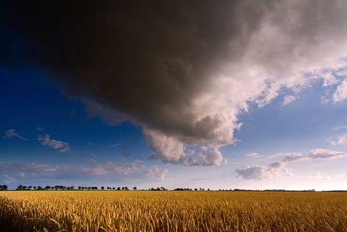 Nederlands Gronings graanlandschap met wolkenlucht