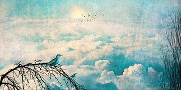 HEAVENLY BIRDS III-B2-Panorama von Pia Schneider