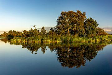 Photo symétrique d'arbres, de plantes et de roseaux au bord de l'eau se reflétant dans l'eau à Gieth sur Dafne Vos