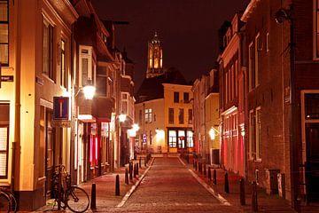 Stadsgezicht van Utrecht met de Dom toren bij avond van Nisangha Masselink