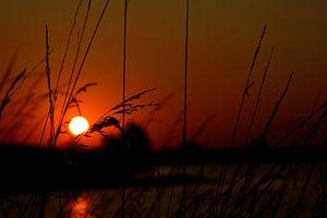 Zonsondergang bij het Grevelingenmeer. van