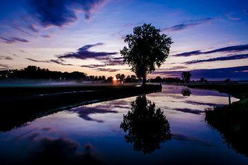 Weerspiegeling boom horizontaal von Kim van Dijk