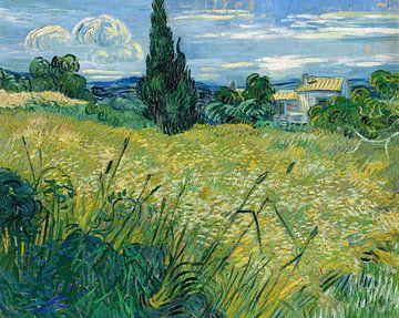 Grüner Weizen, Vincent van Gogh