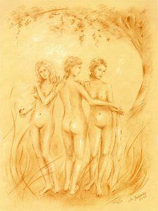 Drie vereren - erotische tekeningen