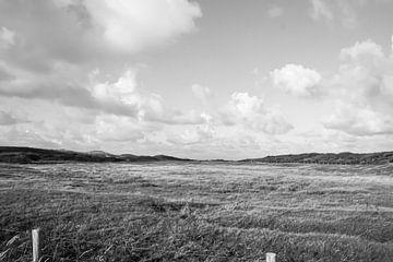 Ansicht von Zeeland von Niek Traas