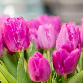 Boeket roze tulpen van Wim Stolwerk
