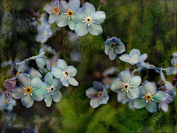Blumenfreude - Vergissmeinnicht von Claudia Gründler