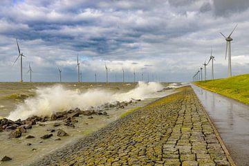 Windturbinen am Ufer des IJsselmeers von Sjoerd van der Wal