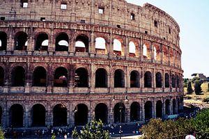 Colosseum Rome van