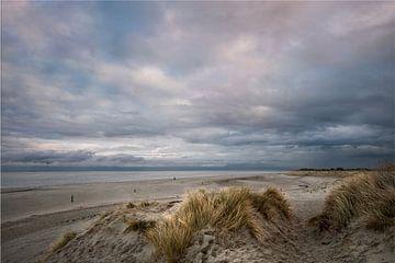 Alleen op het strand van Margo Schoote