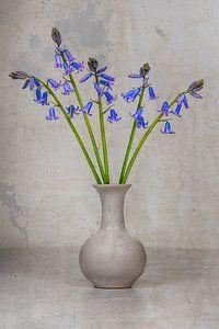 Wilde hyacinten in vaas