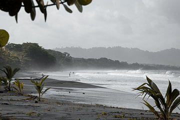 Nevelwoud Costa Rica langs het strand van Bianca ter Riet