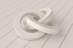 White Rings van